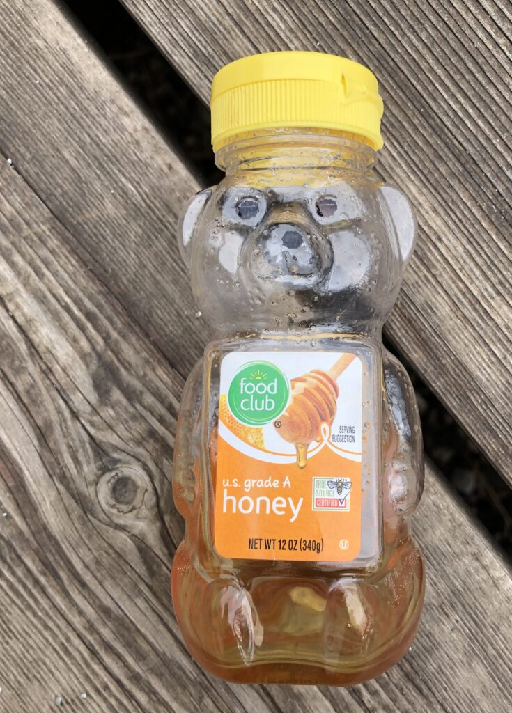 a honey bear for camping