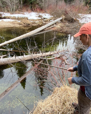 fishing for trout in a mountain creek