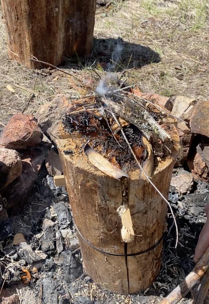 tinder and kindling on a fire log