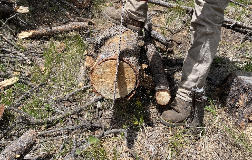 cutting into a log to make a swedish one log fire