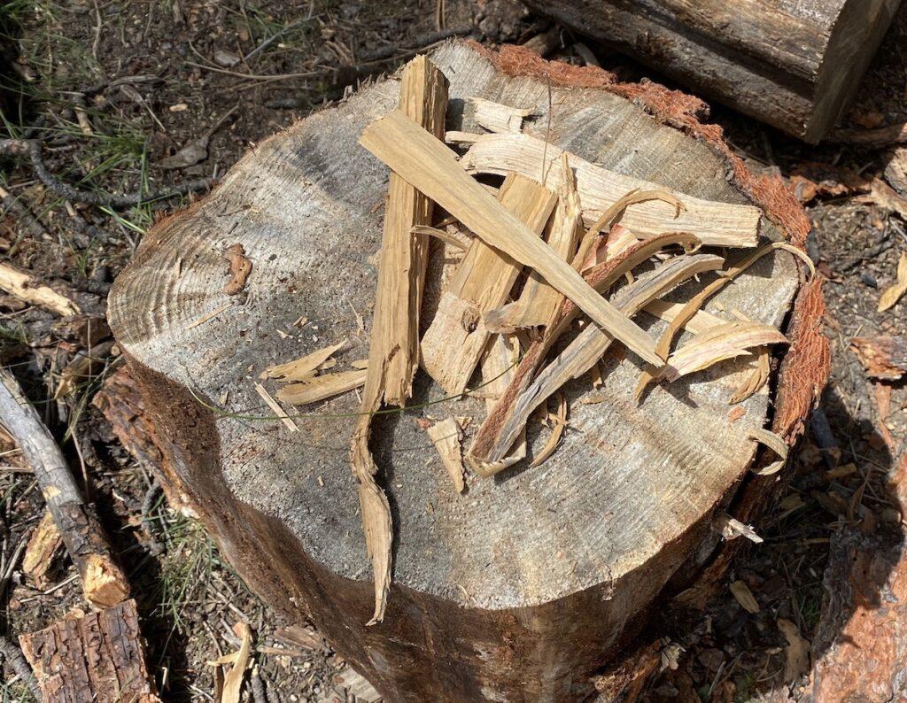 wood shavings for starting a fire