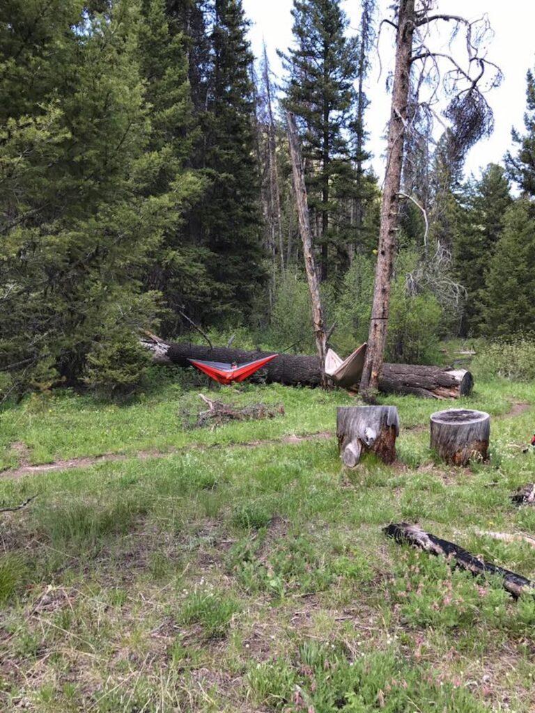 survival camping in hammocks