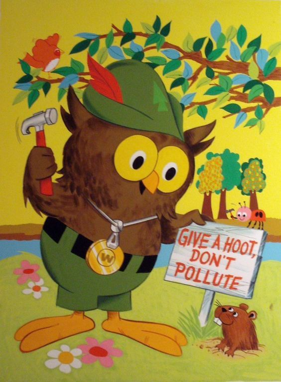 woodsy-owl don't pollute clean your campground